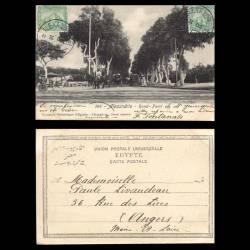 Egypte - Alexandrie - Rond-Point - 1905 - Caléches - Animée