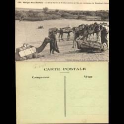 Sénégal - Le sel en barres de 30 kilos environ arrive par caravanes, de Taoudenit - Beau plan animé
