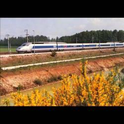 28 - Dangeau - Rame TGV A 325 au PRS de Dangeau le 10 mai 1990
