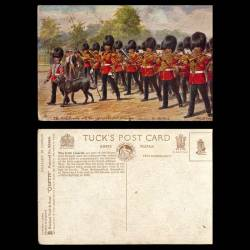 GB - The Irish Guards with their regimental pet (Irish Wolfhound) marching into the park