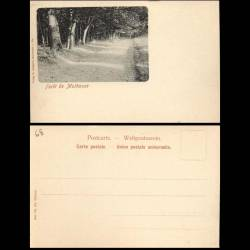 68 - Foret de Mulhouse - Editions Gangloff