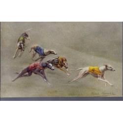 Course de lévriers - Dernier virage - Couleur - Rare - Greyhound Racing