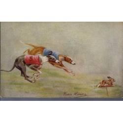Course de lévriers - L'arrivée - Couleur - Rare - Greyhound Racing