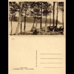 40 - Hossegor - La dune de Branere