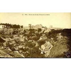 Maroc - Fez - Ruines des anciens remparts du Mellah