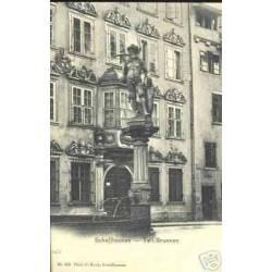 SUISSE - SCHAFFHAUSEN - TELL-BRUNNEN