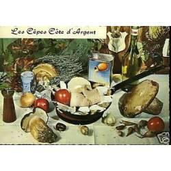 Carte Recette - Les cepes Ca´te d'Argent