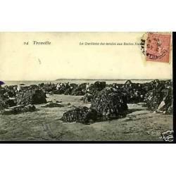 14 - Trouville -Cueillette des molues aux Roches Noires