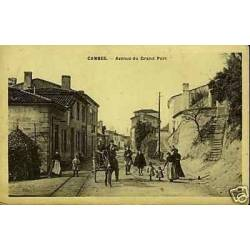 33 - Cambes - Avenue du Grand Port - Attelage