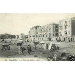 62 - Wimereux - La plage et les chalets