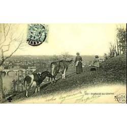 86 - Paysage du centre - Vaches et paysanne