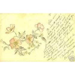Carte dessinee et aquarellee - Fleurs
