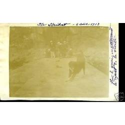 Carte-photo - Ile Brehat - Les quais (22) - 1913