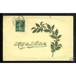 Mille bons souhaits - Branche de houx- Carte en Relief