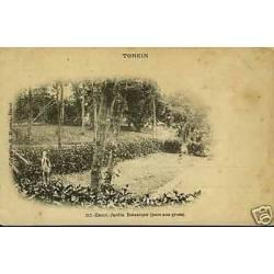 Tonkin - Hanoi - Jardin botanique - Parc aux grues