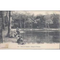 92 - Bois de Clamart - Etang des Trivaux