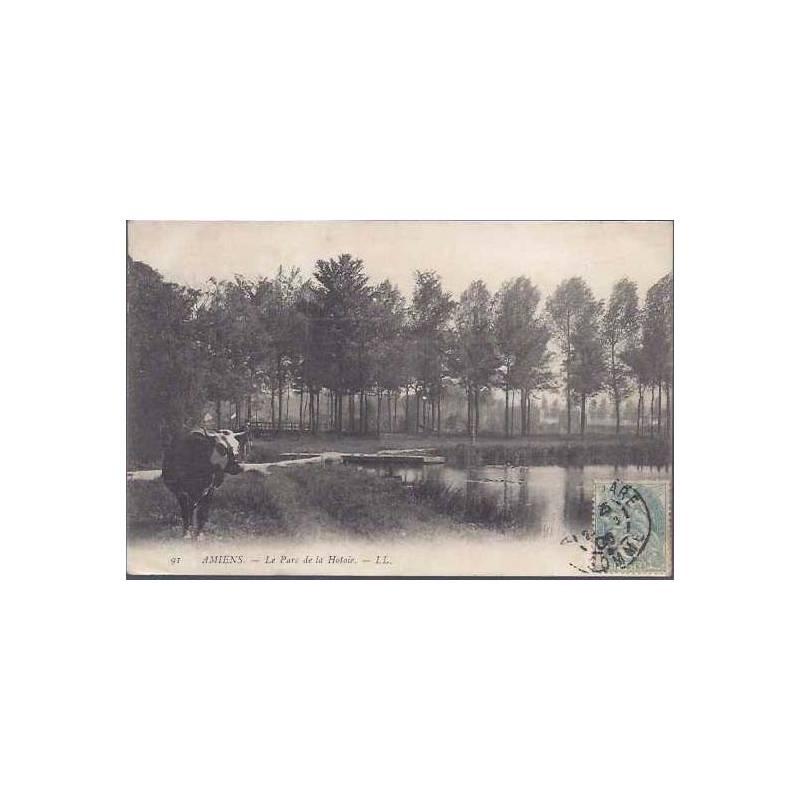 80 - Amiens - Le parc de la Hotoie - Vache
