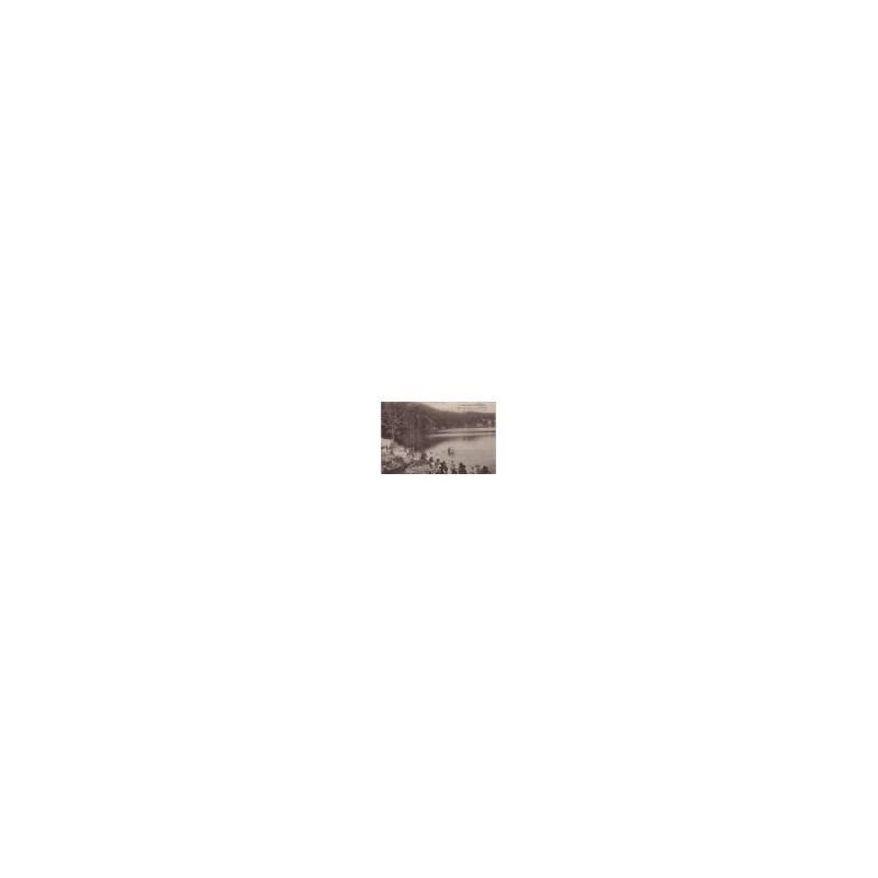63 - Aux bords du lac pavin