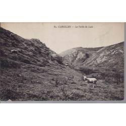 50 - Carolles - La vallée du Lude - Agneaux