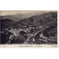 66 - Amélie les Bains - Vue générale 2