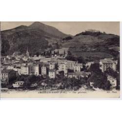 66 - Amélie les Bains - Vue générale 3