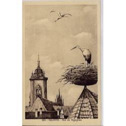 68 - Colmar - Nid de cigognes