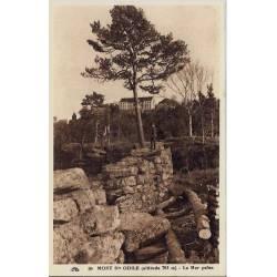 68 - Mont Ste Odile - Le mur Païen