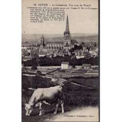 71 - Autun -La cathédrale prise de Rivault - Vache