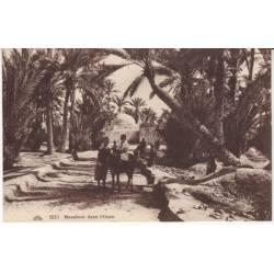 Algérie - Marabout dans l'oasis