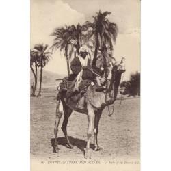 Egypte - Chameau et mehari
