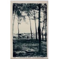 40 - La tranche-sur-Mer - Vue des bois de Pins - Voyagé - Dos divisé