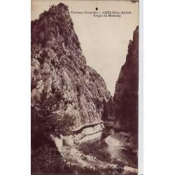 66 - Amélie-les-Bains - Gorges du Mondony - Non voyagé - Dos divisé