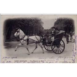 75 - Paris - Mondain - Nos élégantes au bois - Voyagé - Dos non divisé