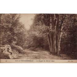 77 - Forêt de Fontainebleau - Le bouquet du Nid de l'Aigle - Non voyagé - Dos