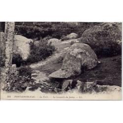 77 - Fontainebleau - La forêt - La casquette du Jockey - Non voyagé - Dos divi