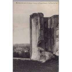 02 - La Ferté-Millon - Ruines du vieux château - La tour du Roi - Non voyagé...