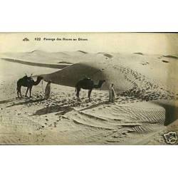 Algerie - Passage des dunes au desert
