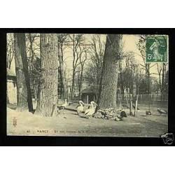 54 - Nancy - Coin de la Pepiniere - Les hotes du Jardin