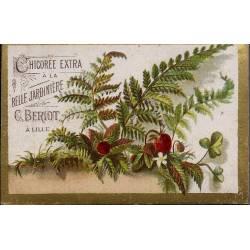 Chromo - Chicorée Extra La Belle Jardinière - Fleurs II - Beriot - Lil