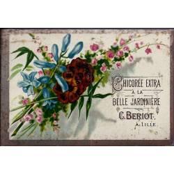 Chromo - Chicorée Extra La Belle Jardinière - Fleurs IV - Beriot - Lil