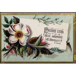 Chromo - Chicorée Extra La Belle Jardinière - Fleurs V - Beriot - Lill