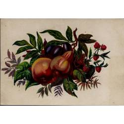 Chromo - Fleurs et fruits III - Bon état - 9 cm x 13 cm