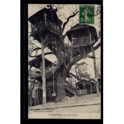 92 - Robinson - Le vrai arbre - Voyagé - Dos divisé