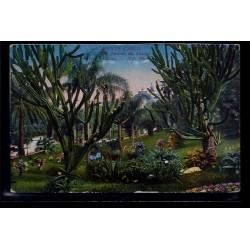 Monaco - Monté-Carlo - les  jardins du casino - cactus - Non voyagé - Dos d