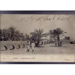Tunisie - Zarzis - Canalisation dans l'Oasis - 1906