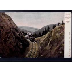 Allemagne - Harz - Harzquer und Brockenbahn - Blick ins Drängethal - Train