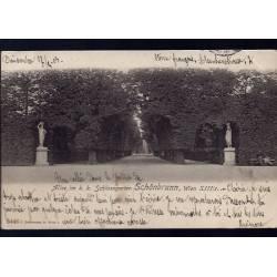 Autriche - Wien - Schönbrunn - Allee im k. k. Schlossgarten